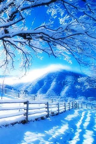 梦幻雪景动态壁纸