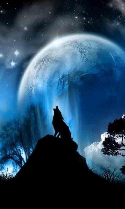 夜晚风景图 高清竖屏